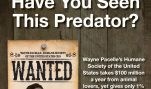 Have You Seen This Predator?