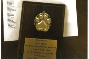 "HSUS Gave Award to Alleged ""Puppy Mill"" Buyer"