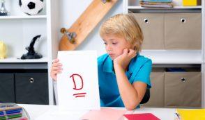 "Watchdog: Humane Society Gets a ""D"" Grade"