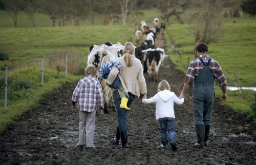 HSUS Hurts Family Farmers - HumaneWatch  HSUS Hurts Fami...
