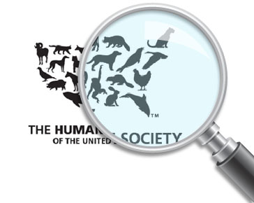 HSUS Lobbyist, Congressional Ally Are Under Fire