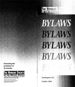 writing bylaws